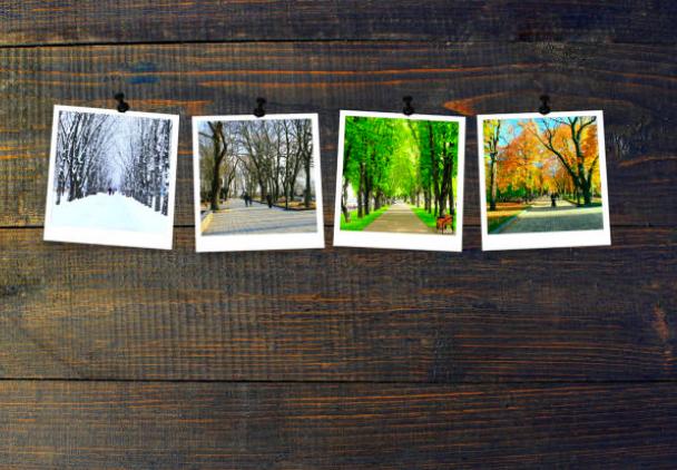 Changing Seasons, Changing Patterns